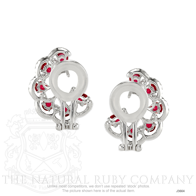 2.16ct Ruby Earring Image 4