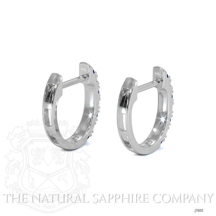 0.20ct Blue Sapphire Earring Image 4