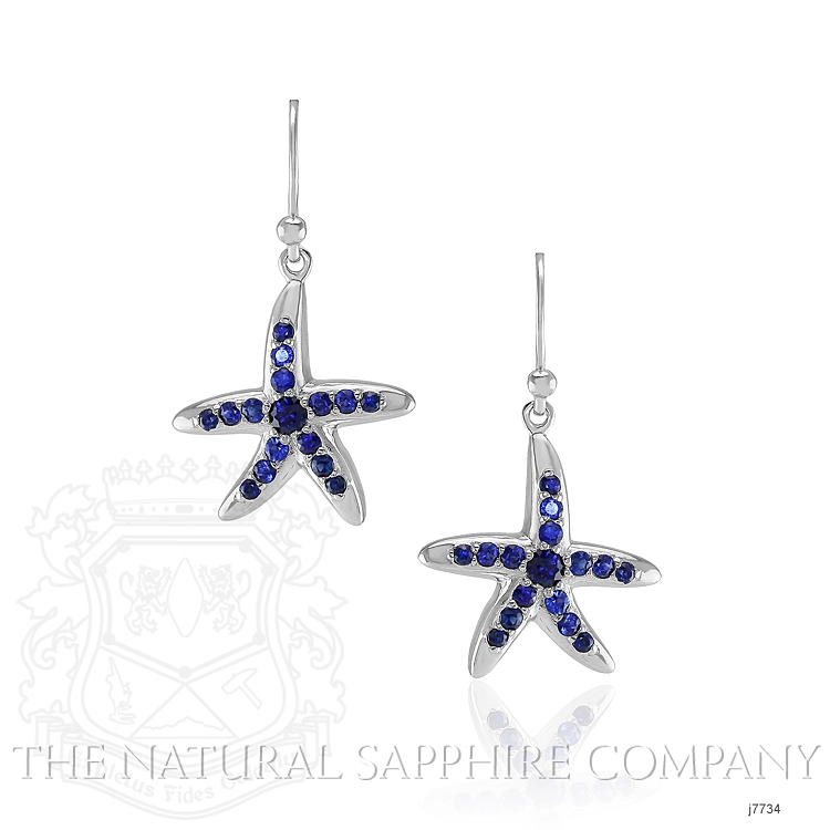 1.20ct Blue Sapphire Earring Image