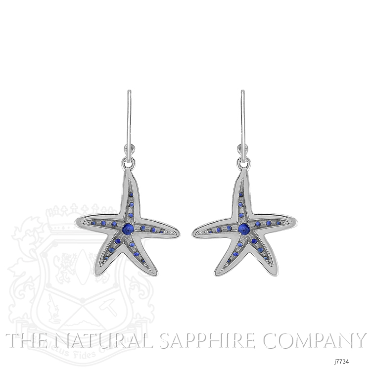 1.20ct Blue Sapphire Earring Image 3