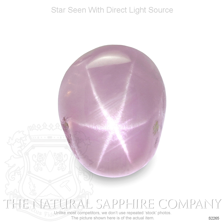 Natural Untreated Star Sapphire S2265 Image