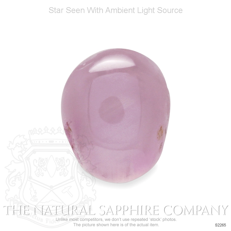 Natural Untreated Star Sapphire S2265 Image 2