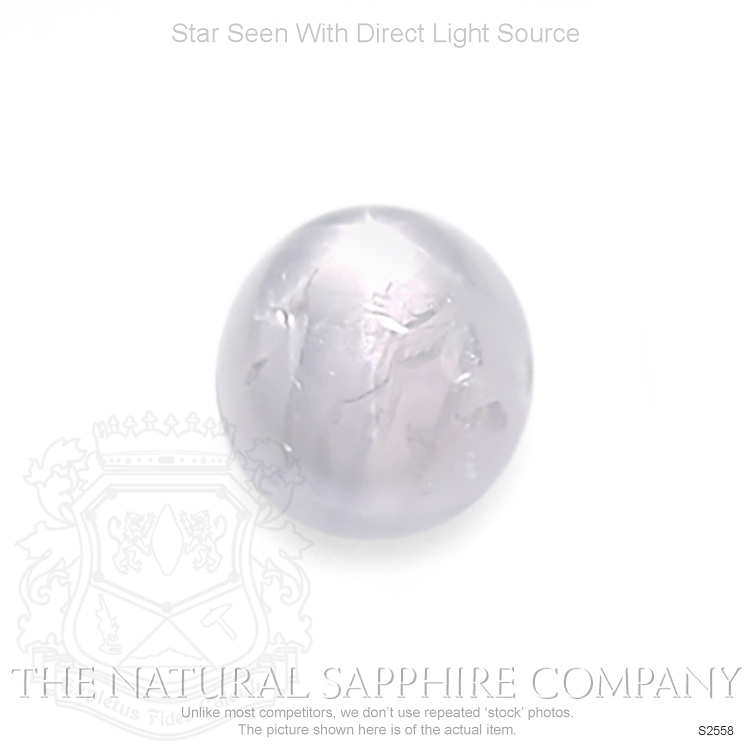 Natural Untreated Star Sapphire S2558 Image