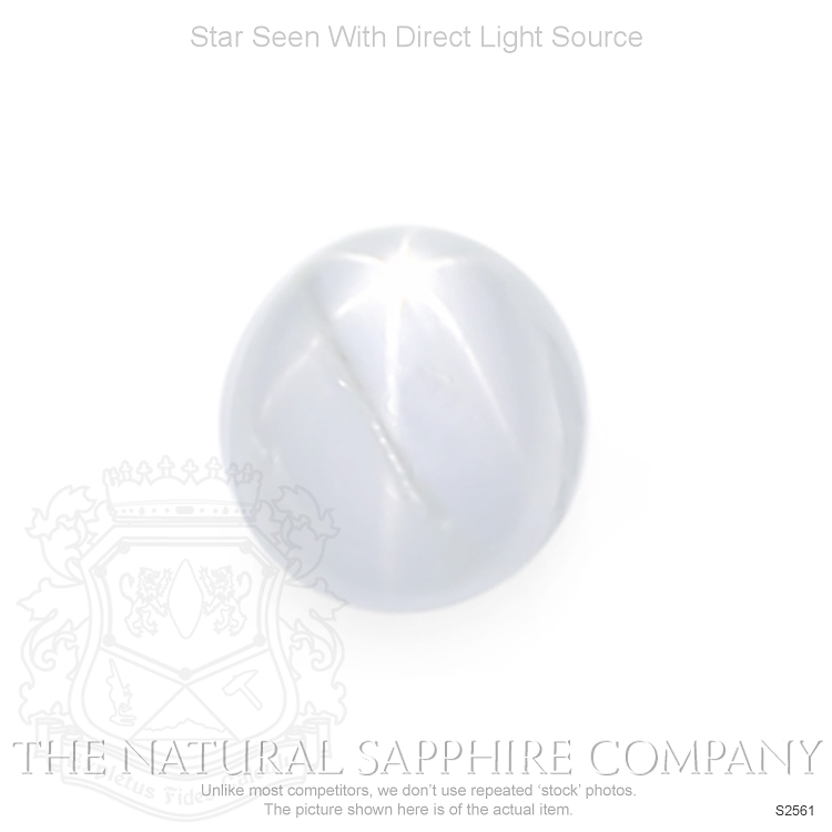 Natural Untreated Star Sapphire S2561 Image
