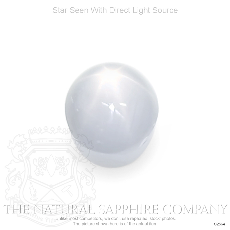 Natural Untreated Star Sapphire S2564 Image
