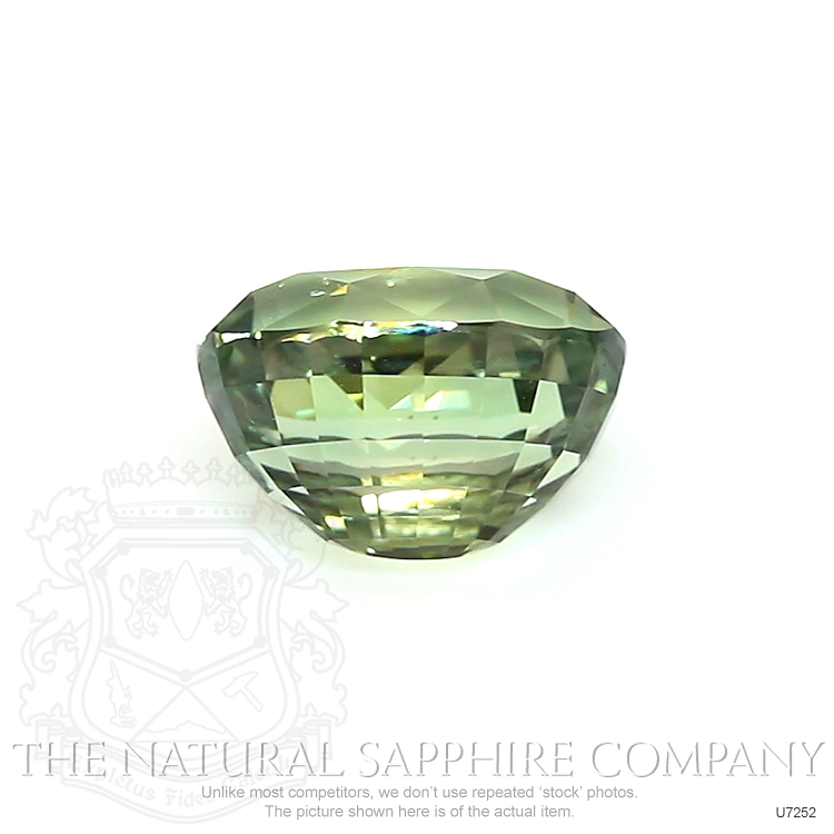 Natural Untreated Greenish Yellow Sapphire U7252 Image 2
